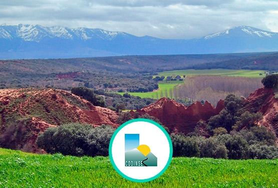 CODINSE Nordeste de Segovia